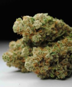 Buy Dutch Treat kush Online